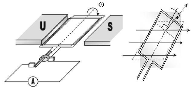 Model generator, Kumparan diputar disekitar medan magnet