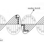 Perambatan Gelombang Elektromagnetik