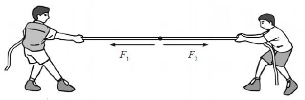 Contoh Soal Dan Latihan Soal Fisika Gaya Kelas 8