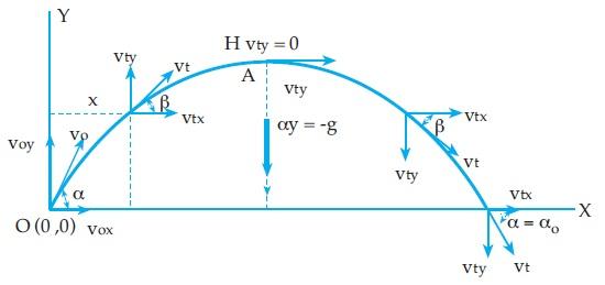 Grafik Gerak Parabola Fisika Zone