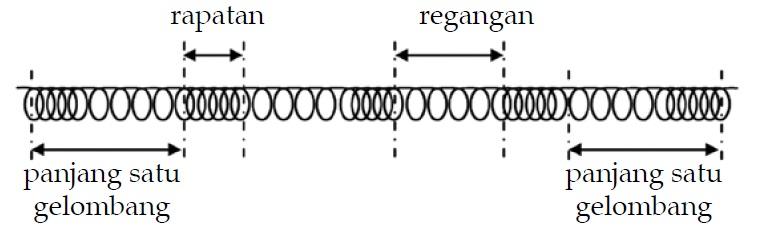 Bagian-Bagian Gelombang Longitudinal