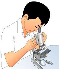 Menggunakan Mikroskop Dan Merawat Mikroskop