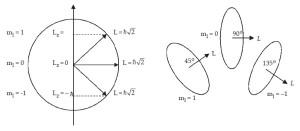 Teori Kuantum Atom