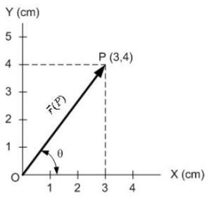 vektor posisi