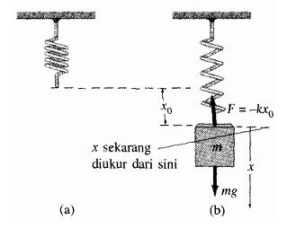 Gambar 2. Pegas yang tergantung vertikal